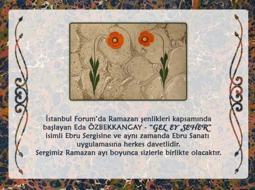 Ebru Sergisi